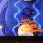 MasterChef 2 13 Seline dish Whale Cottage Portfolio