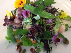Pierneef a La Motte salad Whale Cottage Portfolio