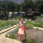 Seline van der Wat City Farm Whale Cottage Portfolio