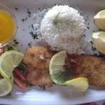 Fisherman's Catch & Grill Hake Whale Cottage Portfolio