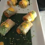 World Class Umi rolls Whale Cottage