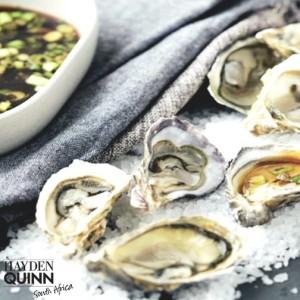 Hayden Quinn 6 Knysna Oysters