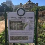 Haarlem & Hope VOC vegetable garden Whale Cottage