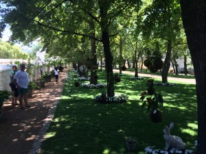 Boschendal Greenery under Trees Whale Cottage