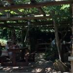 Biga courtyard Whale Cottage