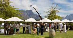 Franschhoek Summer Wine