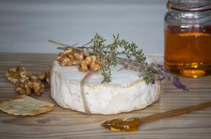 Cheese Festival Camembert