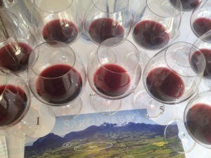 Saronsberg 10 glasses Whale Cottage