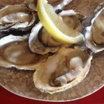 LangTafel Oysters Whale Cottage