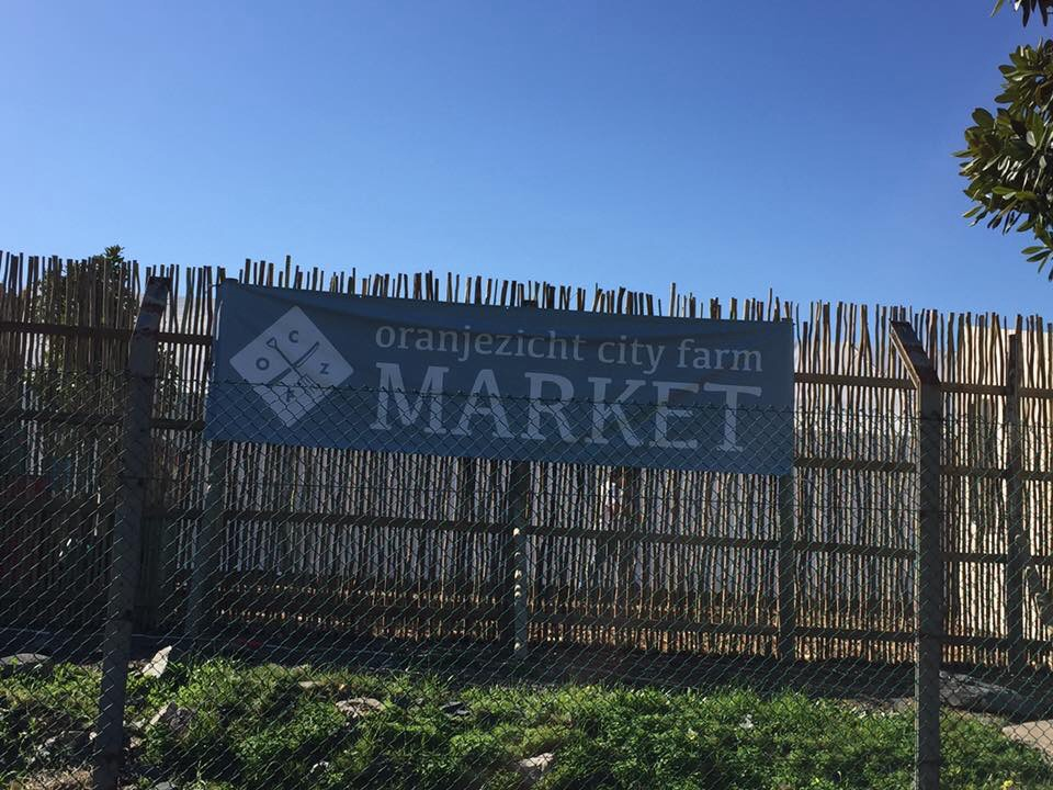 77f4659c3b18e Yesterday my friend Jenny and I visited the new venue of the Oranjezicht  City Farm Market in the V A Waterfront, alongside Beach Road near the Grand  Café on ...